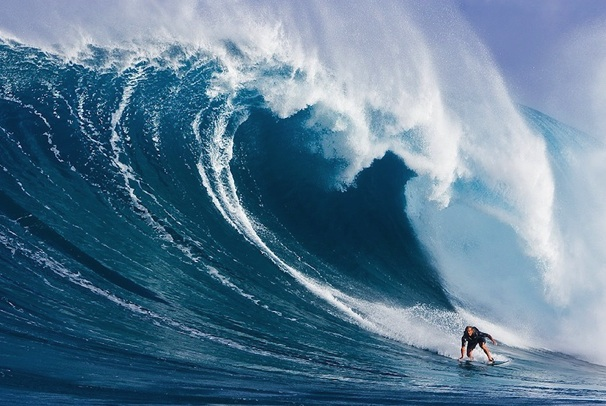 """SURFER DROP OUTS """"SWITCHFOOT"""""""